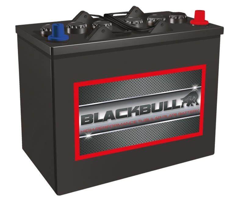 Imagen de Batería BLACKBULL 12TB110 Tubular